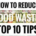 How to reduce Food Waste. Top 10 Tips
